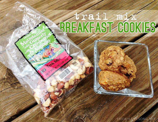 Husband Shaming + Trail Mix Breakfast Cookies - fridaylovesong.net