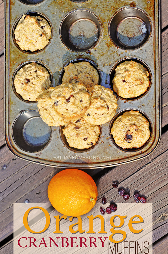 Orange Cranberry Muffins - fridaylovesong.net